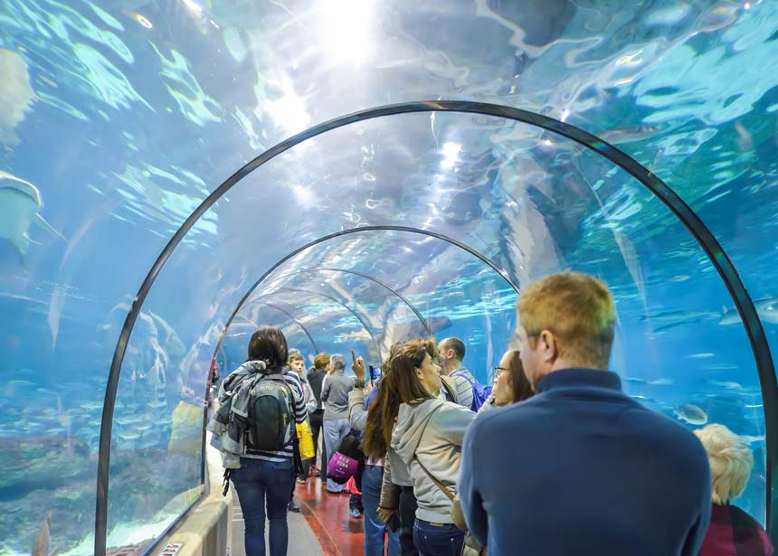 Aquarium-Benalmadena