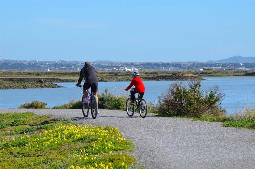 bicicletas por el parque Natural Bahia de Cadiz