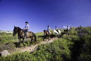 Imprescindibles de Mahón Cami de cavalls menorca2