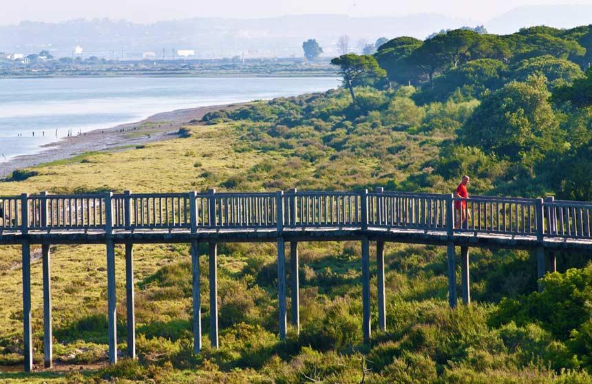 Parque Natural de los Toruños