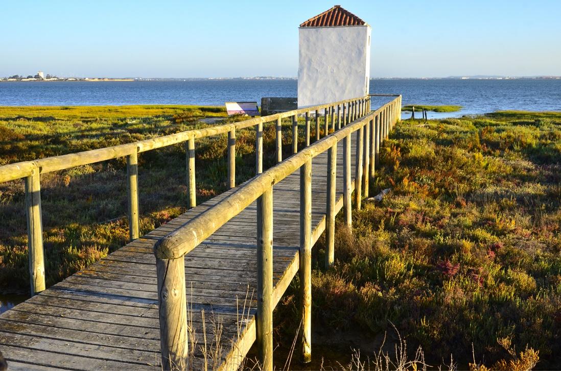 Pasarela junto al lago del parque Natural de la Bahia de Cadiz, Costa de la Luz
