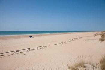 vista panoramica de la interminable playa del palmar en Vejer de la Frontera