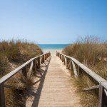 Playa El Palmar - Conil de la Frontera