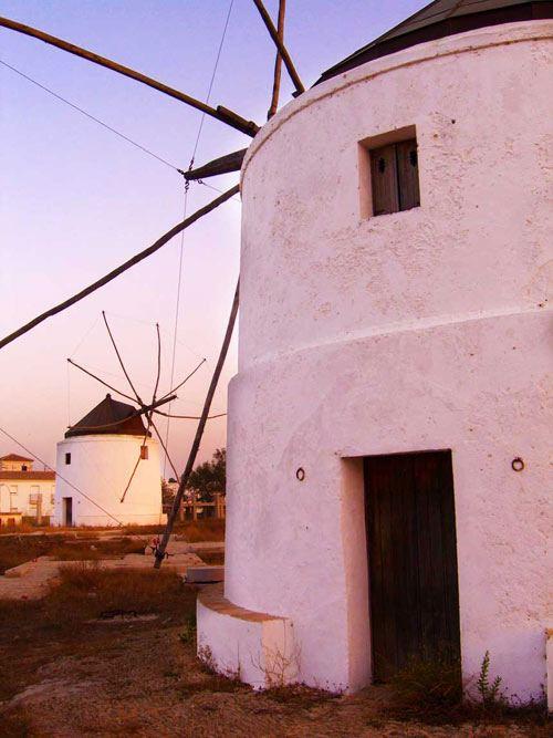Puesta de sol en los molinos de Vejer de la Frontera