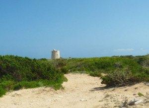 Camino hacia la torre de Ses Portes