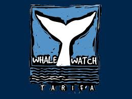Empresa dedicada al avistamiento de cetaceos, Tarifa llamada Whale Watch Tarifa