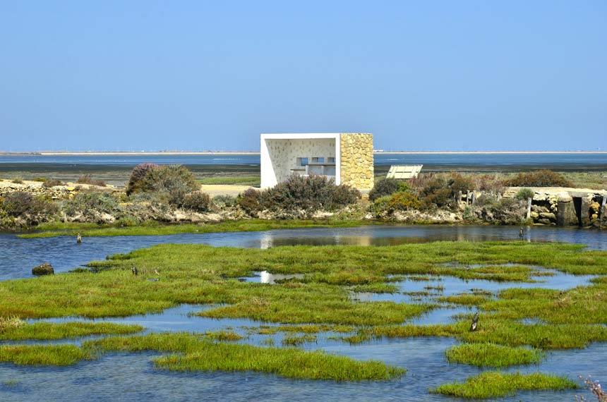 Observation parque natural Bahia de Cadiz