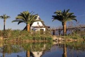 Imprescindibles de Valencia casita tradicional de el parque de la Albufera en Valencia