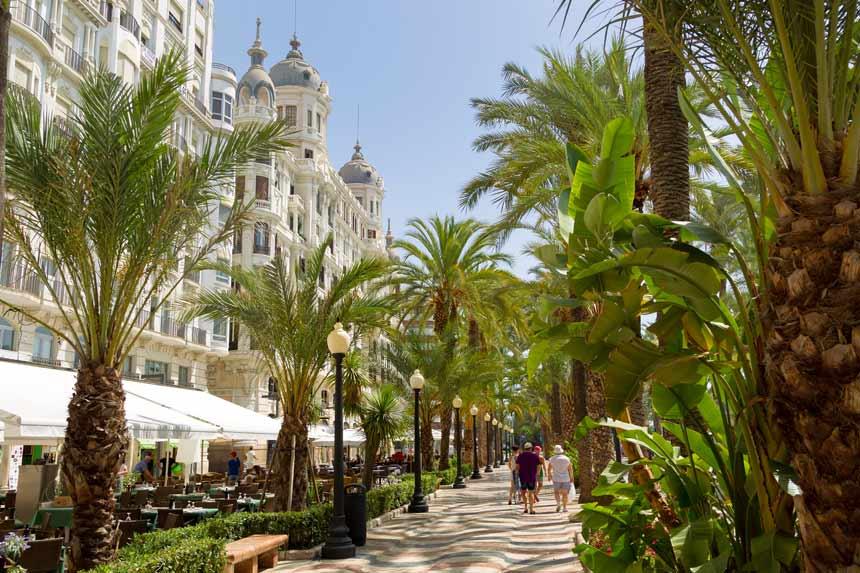 bonito paseo de la explanada rodeado de plantas tropicales y edificios historiocos en el centro de alicante