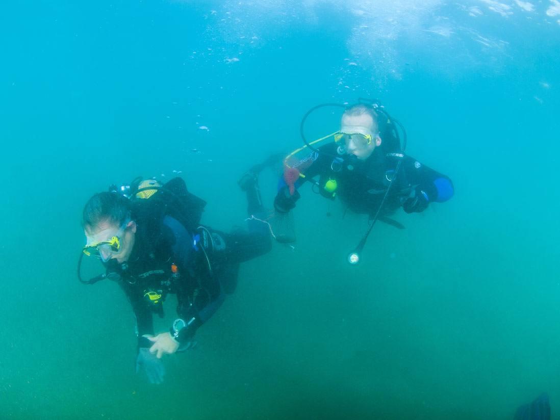 Imprescindibles de Calp buceadores haciendo submarinismo costa blanca