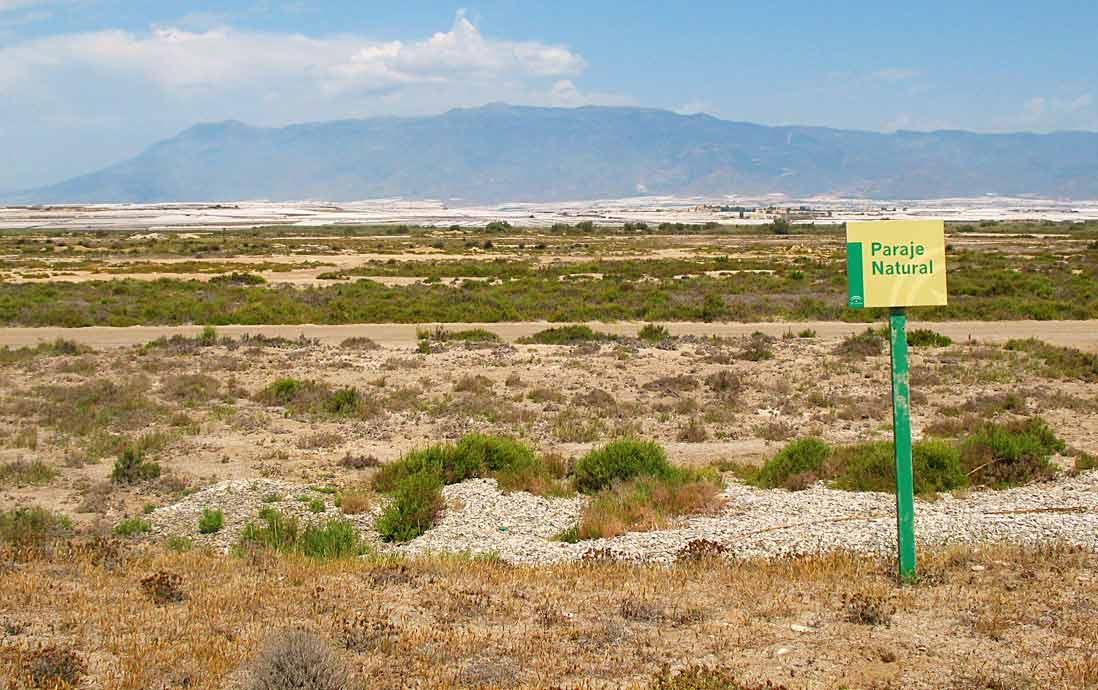 Panoramica del Paraje Natural Punta Entinas-Sabinar Almería
