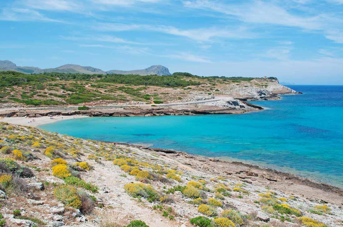 panoramica cala mitjana en Arta al norte de Mallorca