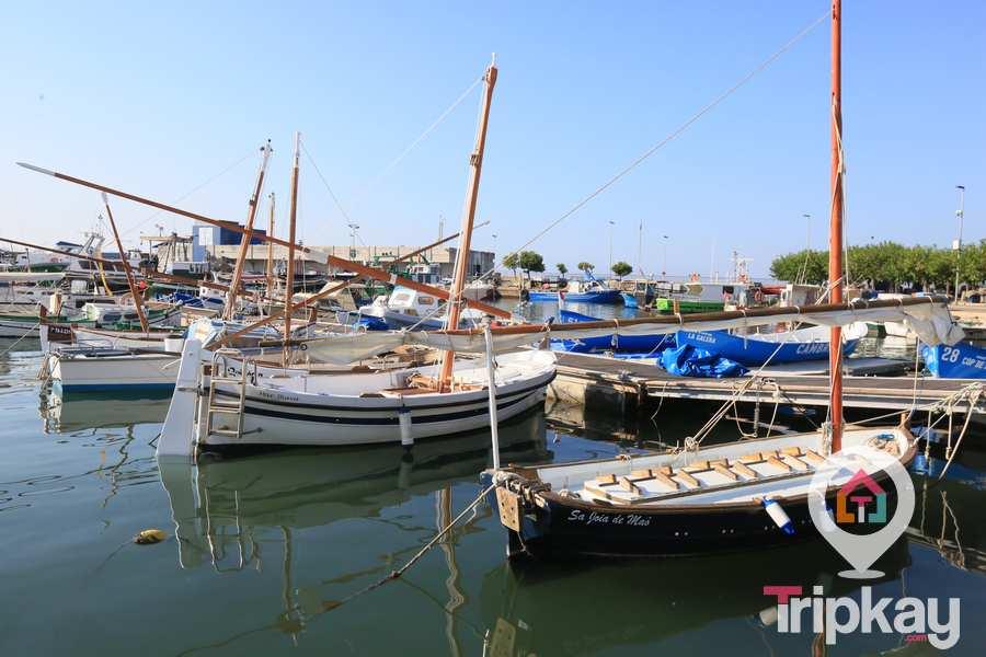 barcas tradicionales del puerto de Cambrils