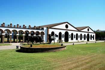 Main entrance Bodegas Osborne in Puerto de Santa Maria