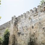 The Alcazaba fortress and its arab wall