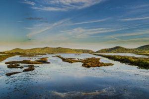 Natural Park Ses Salines in ibiza