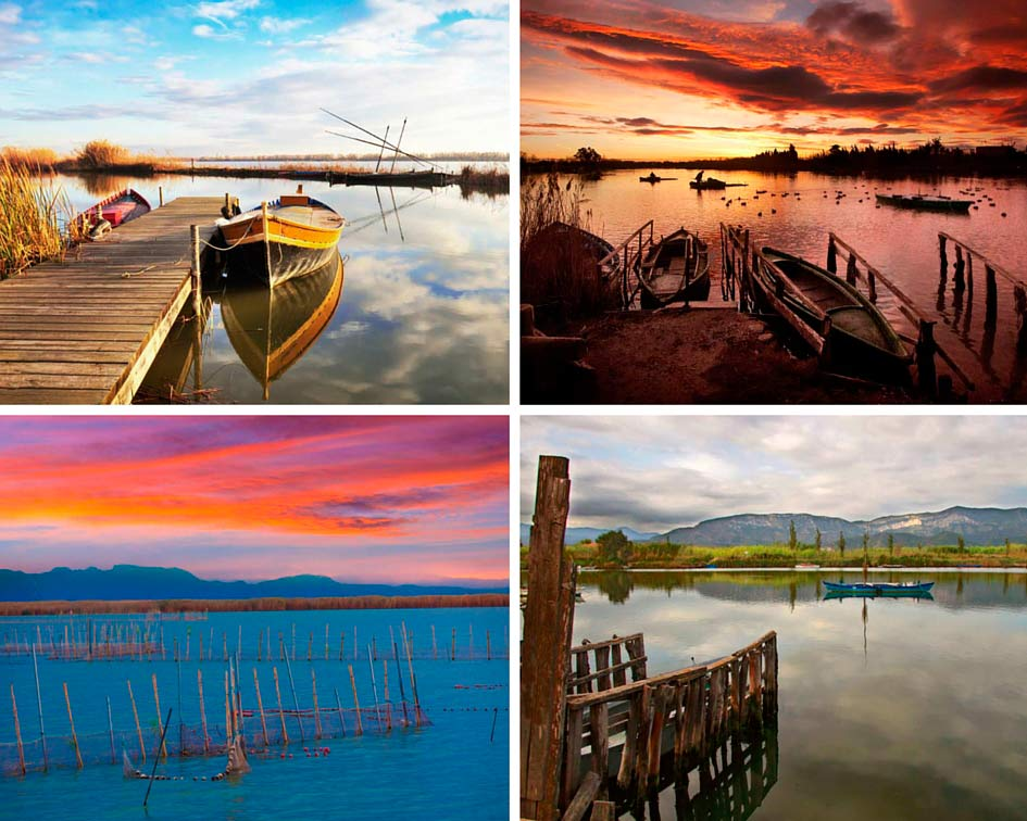 Photo Collage Albufera Natural Park in Cullera