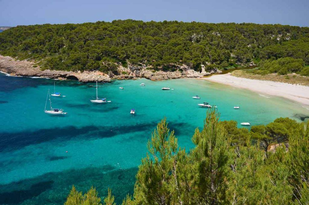 panoramic view Cala Trebaluguer with turquois waters and green forest