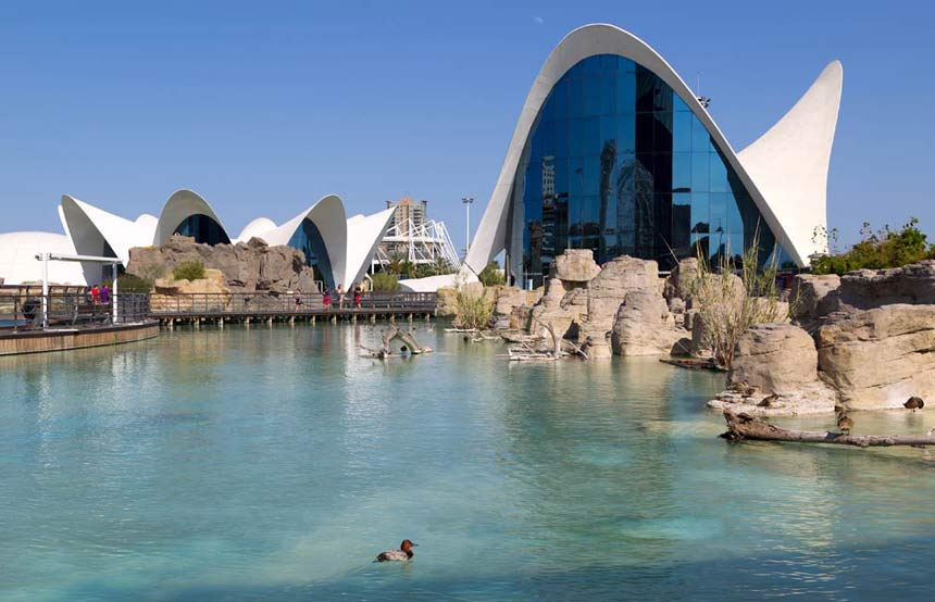 Spectacular builings of the city of Arts and science of Valencia