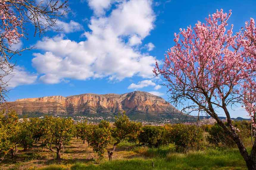 The essential tourist spots of Denia Natural-Park-Montgo-in-Denia