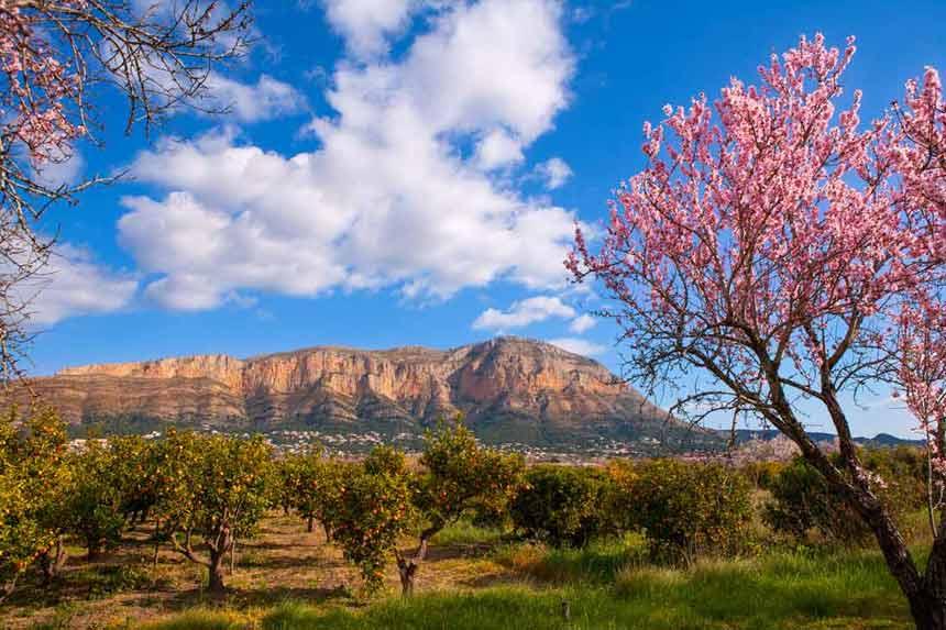 Costa Blanca Natural-Park-Montgo-in-Denia