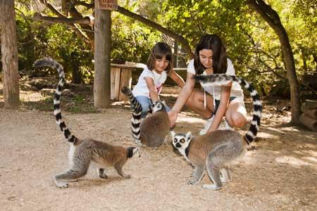 Zoological-Park-Lloc-de-Menorca