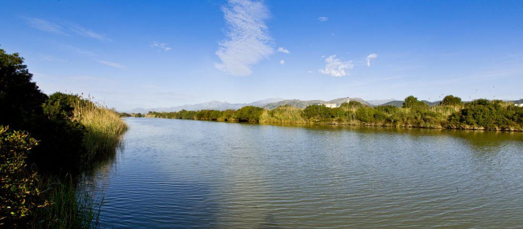 Wetlands of S'Albufera Natural Park