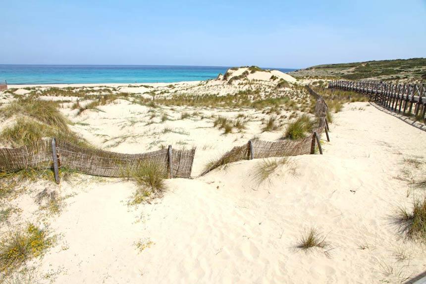 Beautifull sand dunes of Cala Mesquida