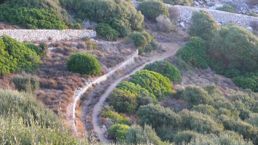 Sa Dragonera island dirt tracks