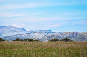 Beutifull landscape of S'Albufera Natural Park in north of Mallorca