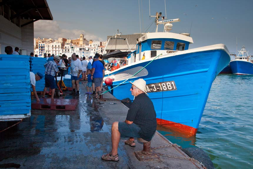 Ametlla de mar spain what to do and see photos videos for The fish market del mar