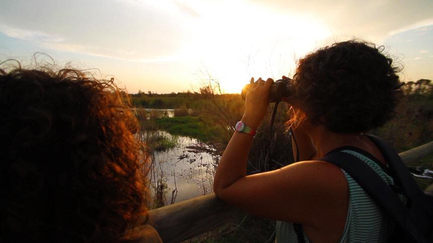 Turist in Natural Park els Aiguamolls