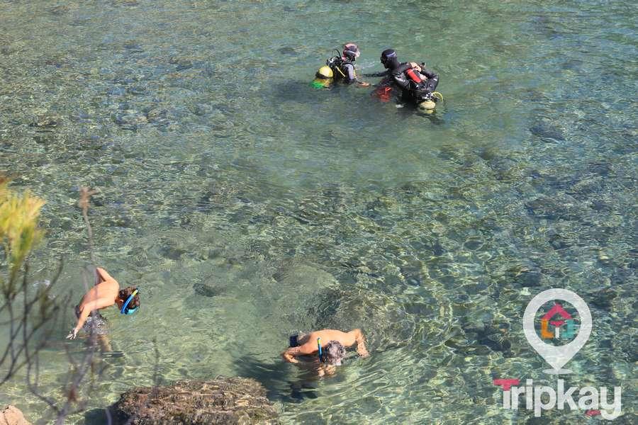 Submarisnismo en Cala LLobeta, Ametlla de Mar
