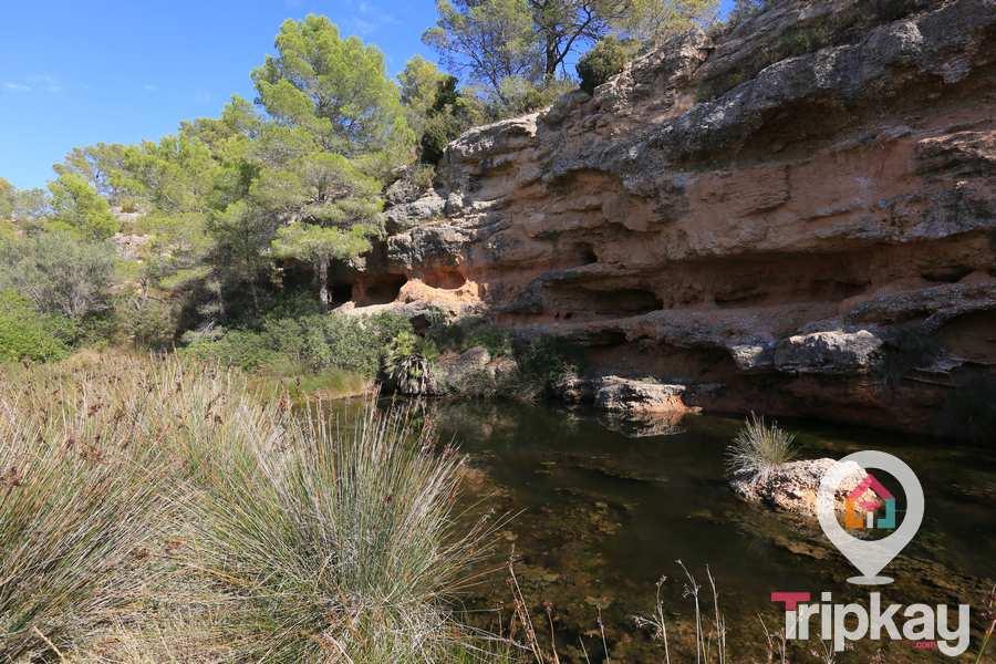 Parque Natural de Santes Creus