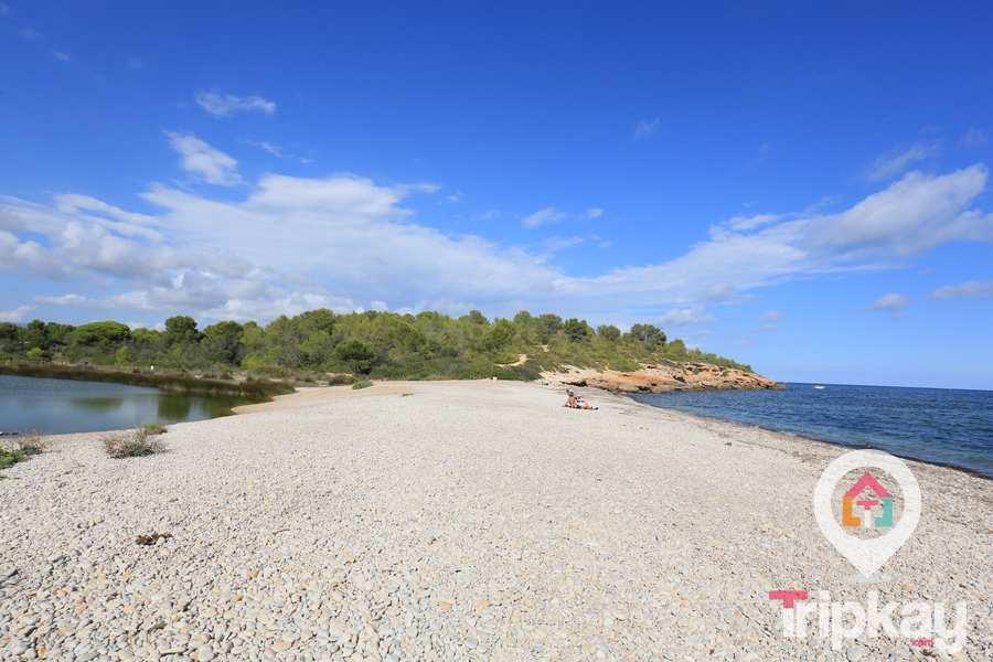 Naturaleza salvaje en Playa santes creus, Ametlla de Mar