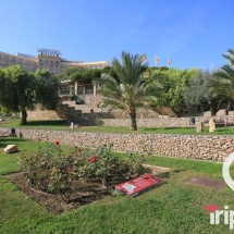 jardines del miracle de Tarragona junto al anfiteatro