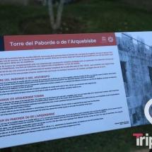 murallas-de-tarragona-8