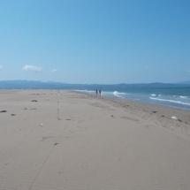 playa de la punta del Fangar en el Delta del Ebro