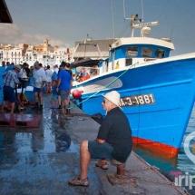 Lonja de pescadores de Ametlla de mar
