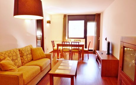 Apartment for 5 people in El Tarter