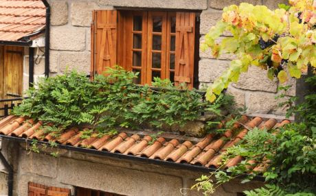 Cottage for 8 people in Campo do Gerês