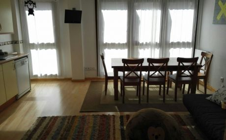 Apartment for 11 people in Biescas